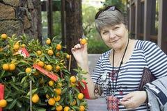 Russische touristische nahe Weihnachtstangerinebaum Mandarinenente in seiner Hand Stockbilder