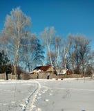 Russische traditionele architectuur Snow-covered takken van berken Royalty-vrije Stock Foto's