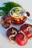 Russische traditionele Pelmeni Stock Fotografie