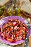 Russische traditionele salade vinegret of vinaigrette met gedobbelde gekookte groenten royalty-vrije stock foto