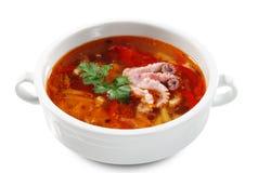 Russische und ukrainische Küche - Fisch Solyanka Lizenzfreie Stockfotografie