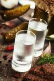 Russische wodka Stock Afbeelding