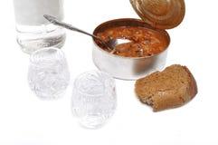 Russische wodka met brood Stock Afbeeldingen