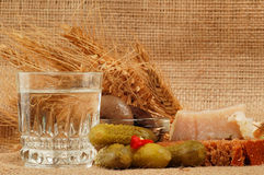 Russische wodka naturmort royalty-vrije stock foto