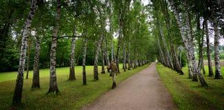 Russischer Groundskeeper am Tolstoy-Land-Zustand lizenzfreie stockfotografie