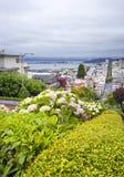 Russischer Hügel auf Lombard-Straße, San Francisco, Kalifornien - USA Lizenzfreie Stockfotografie