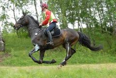 Russischer Mitfahrer und Pferd auf einem Querland springen Lizenzfreies Stockbild