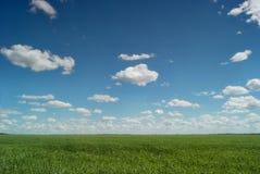 Russischer Raum Die grünen Felder der Saratow-Region unter dem blauen Himmel und den schönen Wolken Stockfoto