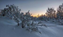 Russischer Winter Lizenzfreie Stockfotografie