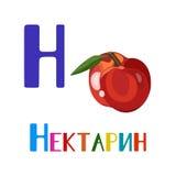 Russisches Alphabet, Buchstaben Schöne Vektorillustration einer Nektarine Stockfotos