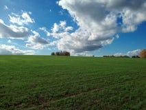 Russisches Feld Stockbild