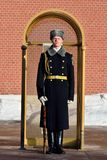 Russisches Lötmittel des der Kreml-Regiments in Moskau lizenzfreie stockbilder