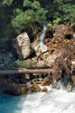 Russland, Abchasien Schneller Gebirgsstrom im Wald Stockfotografie
