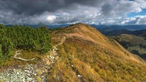 Russland, Altai Berge Stockbilder