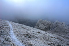 Russland, Altai Berge Lizenzfreies Stockfoto