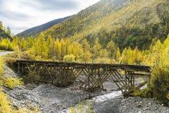 Russland Beschaffenheit des Fernen Ostens: Holzbrücke auf dem Waldweg lizenzfreie stockfotografie