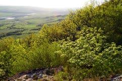 Russland, der Kaukasus, Ansicht vom Berg VerbludCamel Lizenzfreie Stockfotos