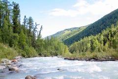 Russland, Republik von Altai Sehr schöne Bilder der Natur in Altai-Hoch Schnee-bedeckten Berge, schnelle, laute Gebirgsflüsse, be Lizenzfreies Stockfoto