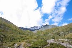 Russland, Republik von Altai Sehr schöne Bilder der Natur in Altai-Hoch Schnee-bedeckten Berge, schnelle, laute Gebirgsflüsse, be Lizenzfreie Stockbilder