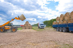 RUSSLAND 6. SEPTEMBER: Bewirtschaften Sie Operationen 6,2014 im September in Bryanskaya Oblast, Russland lizenzfreie stockfotografie