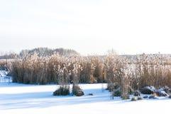 Russland, UralJanuary, Temperatur -33C Stockfotografie