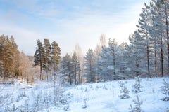Russland, UralJanuary, Temperatur -33C stockbild