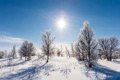Russland, UralJanuary, Temperatur -33C Lizenzfreie Stockfotos