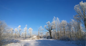 Russland, UralJanuary, Temperatur -33C Stockfoto