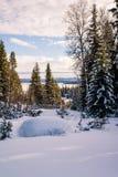 Russland, UralJanuary, Temperatur -33C Feld Feiertagshintergrund Lizenzfreie Stockfotos