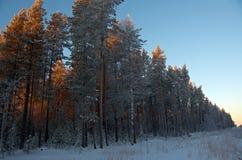 Russland, UralJanuary, Temperatur -33C Kleines Haus im Schnee deckte Holz in den Schweizer Alpen ab Lizenzfreie Stockbilder