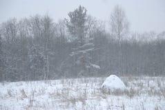 Russland, UralJanuary, Temperatur -33C Schneebedeckter Waldrand schneefälle lizenzfreies stockbild