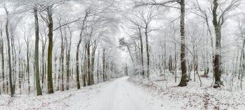 Russland, UralJanuary, Temperatur -33C Winterstraße und -bäume bedeckt mit Schnee Stockfotografie