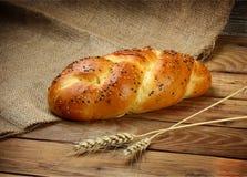 Russo quente pão cozido Fotografia de Stock Royalty Free