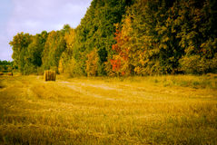 Russo Siberia Autumn Hayfield Village Fotografie Stock
