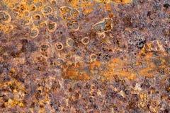 Free Rust Stock Image - 112306531