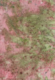 Rust. Green and pink rust background Royalty Free Stock Photo