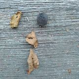 rust Stock Foto's
