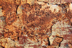 Rust Background Royalty Free Stock Photo