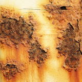 Rust background Weathered ,Textured Stock Images