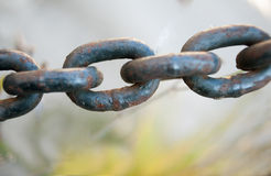 Rust chain closeup Royalty Free Stock Images