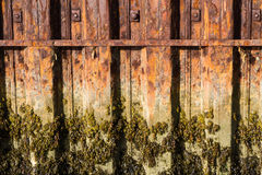 Rust iron girders forming part of harbour wall with seaweed and Royalty Free Stock Photos