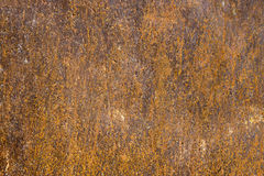 Rust iron metal surface. Texture and background. Rusty and corroded metal surface. Grungy texture and background Royalty Free Stock Photos