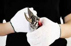 Rust metal scissors Stock Photography