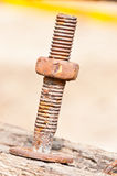 Rust screw Royalty Free Stock Photo