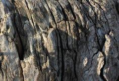 Mood sadness philosophy exaggeration harmony. Rust time wood mood sadness philosophy exacerbation harmony stock photo