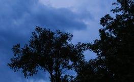 Rust vóór het onweer royalty-vrije stock afbeeldingen
