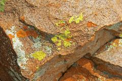 RUST, WHITE AND YELLOW COLOURED LICHEN ON ROCKS. View of a brown coloured rocks with rust, yellow and white lichen growing on royalty free stock photo
