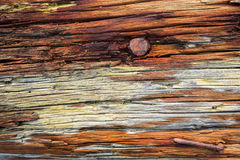 Rust and wood Royalty Free Stock Photography