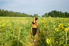 rustande morgonsolros för fält Royaltyfri Fotografi