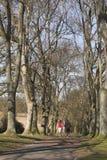 rustande park för par Royaltyfria Bilder
